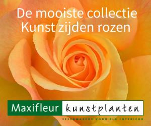Maxifleurkunstplanten.nl cashback