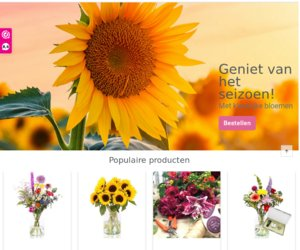 EBloom.nl cashback